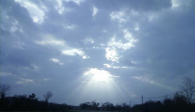 Beauty in the sky